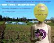L'AMAP Féministe Transpédégouine organise un moment de convivialité !